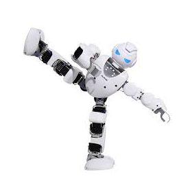 Alpha 1S Humanoid Robot