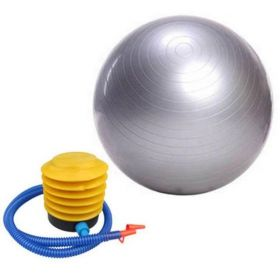 SWISS 65CM ANTI BURST YOGA AEROBIC BODY FITNESS BALL FOR EXERCISE GYM SILVER