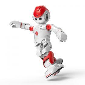 Alpha 2 Humanoid Robot
